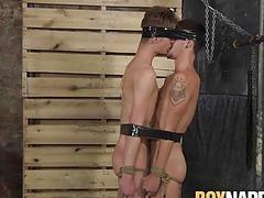 Sub twinks tied up to each other and disciplined by master