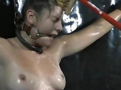 Torturing a miniature hottie