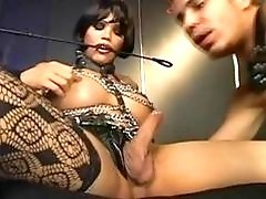 Sexy tgirl dominant babe makes him submit