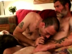 Gaysex bears suck each others dick